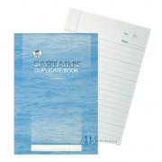 Captain Duplicate Book 5 x 8